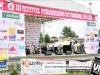 festival-2011-fotos